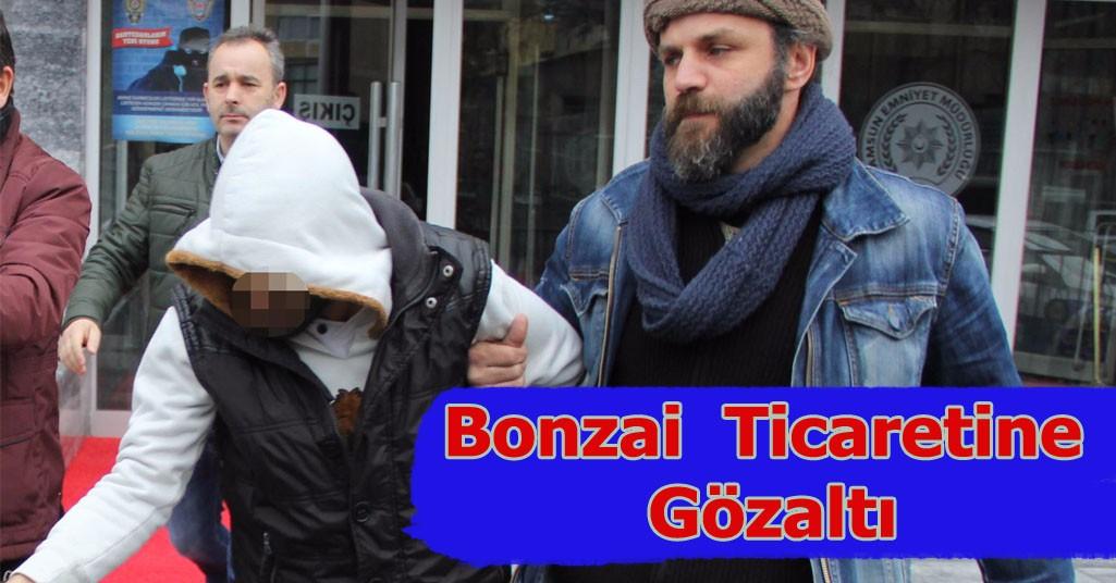 Bonzai Ticaretine Gözaltı