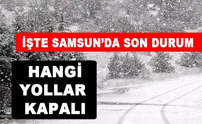 Samsun'da Kar Yağışı Trafiği Durdurdu