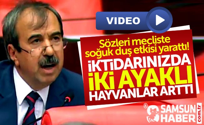 CHP Samsun Milletvekili Hayati Tekin: İki ayaklı hayvanlar arttı