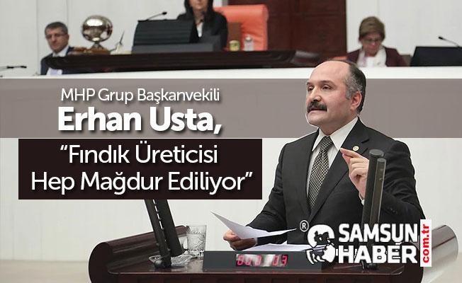 MHP Gurup Başkanvekili Erhan Usta, Fındık Üreticisi Mağdur