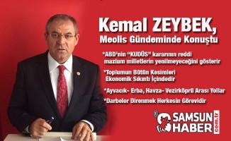 Kemal Zeybek,Merkezi yönetim bütçesinde çeşitli konuları dile getirdi