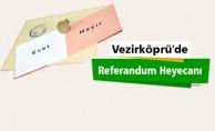 Vezirköprü'de Referandum heyecanı