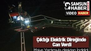 Çıktığı Elektrik Direğinde  Can Verdi-video