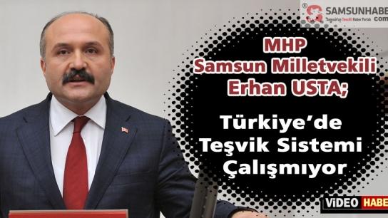 Erhan Usta; Türkiye'de Teşvik Sistemi Çalışmıyor!